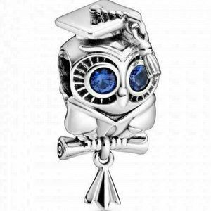 NEW AUTHENTIC PANDORA SILVER CHARM 2020 WISE OWL G